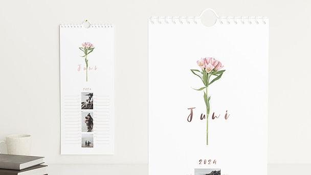 Fotokalender - Botanikum