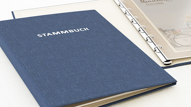 Stammbuch - Romantische Post