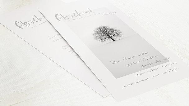 Trauerkarten - Baum der Zeit