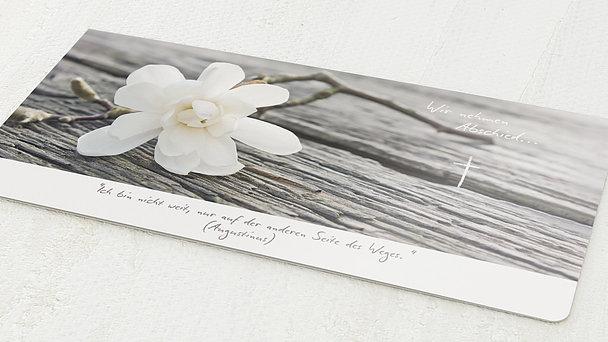 Trauerkarten - Magnolie