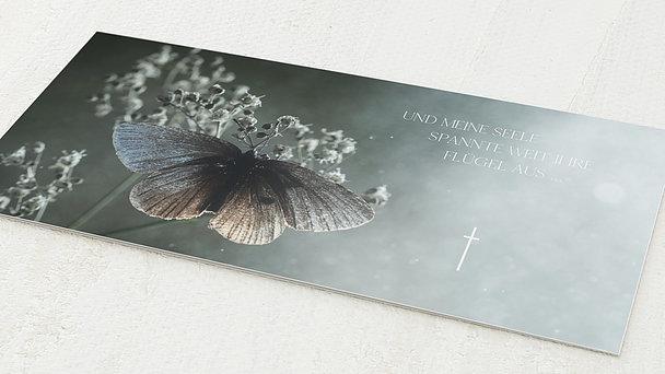 Trauerkarten - Schmetterlingsolo