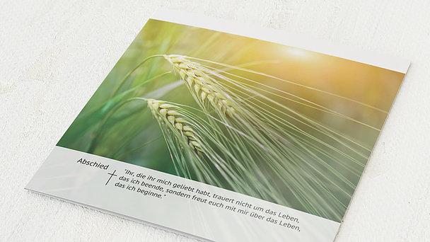Trauerkarten - Kornähren