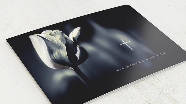 Trauerkarten - Tulpensolo