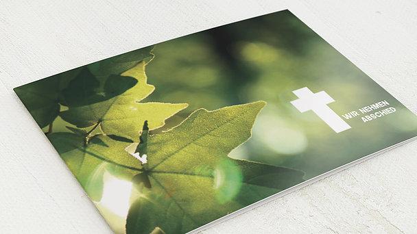 Trauerkarten - Sonnenahorn