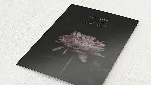 Trauerkarten - Letzte Blüte