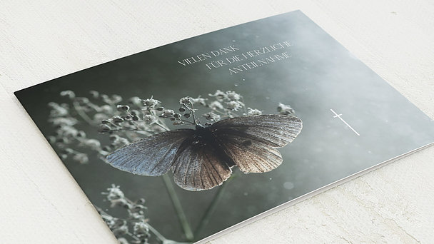 Trauerdanksagung - Schmetterlingsolo